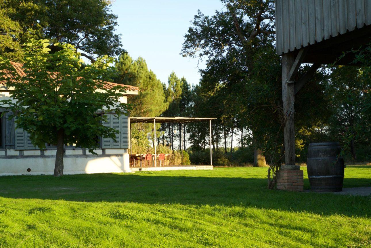 Le jardin de la canopée